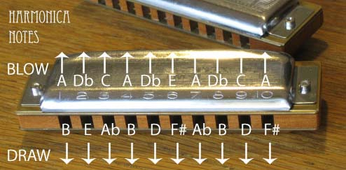 Harmonica harmonica tabs in d : A Major Scale Diatonic Harmonica notes | Harmonica Notes